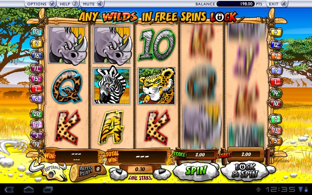 wild gambler screenshot