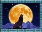 wolf run wild