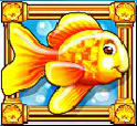 goldfish fish