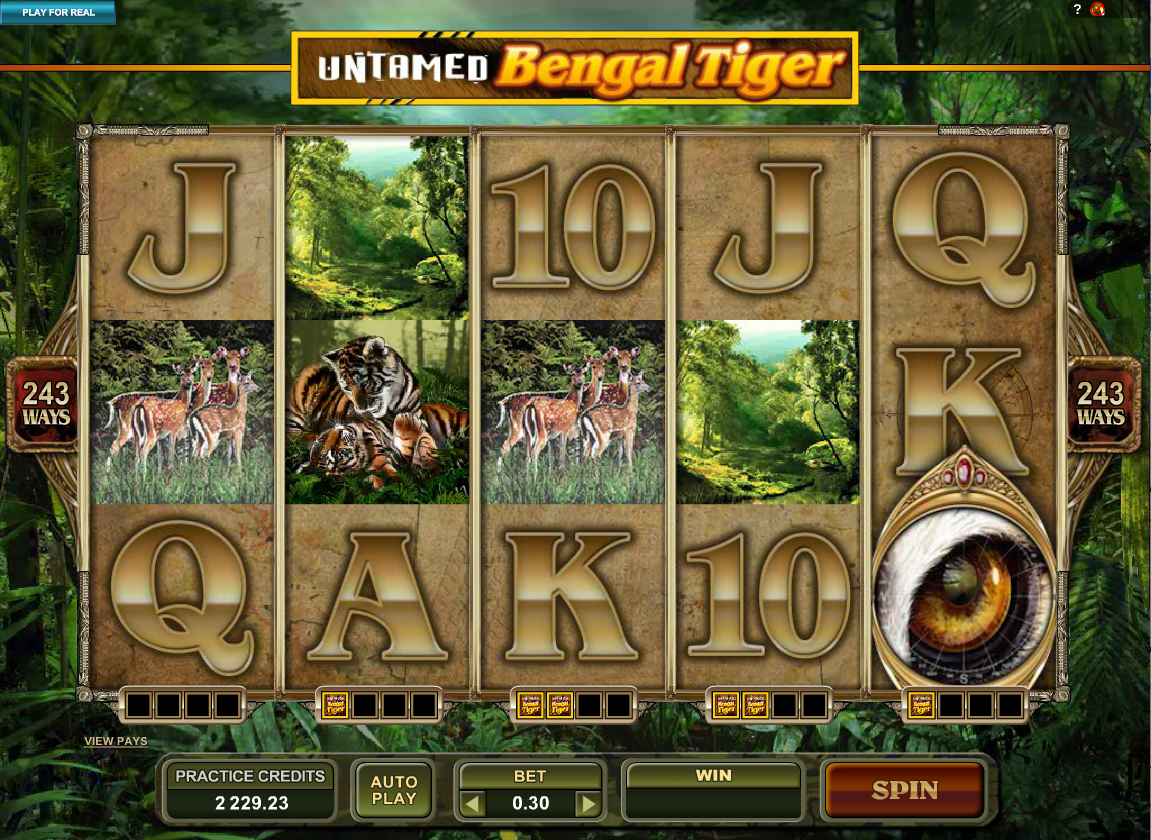 untamed bengal tiger screenshot