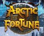 arctic fortune slots