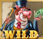 piggy riches wild