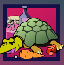 chinese kitchen turtle