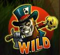 voodoo vibes wild