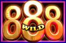 fortune 8 cat wild