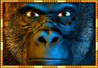 gorilla chief 2 wild