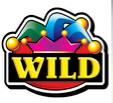 reel king wild