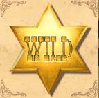 cowboy treasure wild