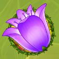 enchanted meadow flower