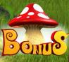 fortune hill bonus