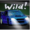 fast track wild