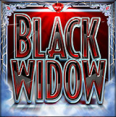 black widow wild