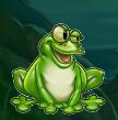 mr toad frog