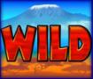 serengeti wild