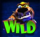 burglin bob wild