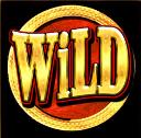 grand casino wild