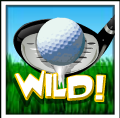 hole in one wild