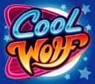 cool wolf wild