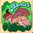 forest of wonders bonus