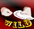the great casini wild