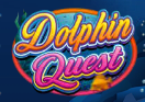 dolphins quest wild