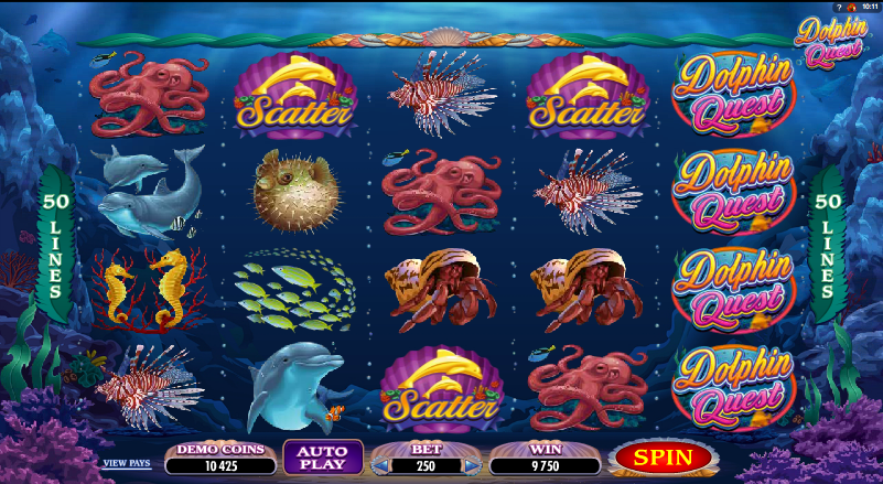 dolphins quest slot review
