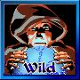 fortune teller1 wild