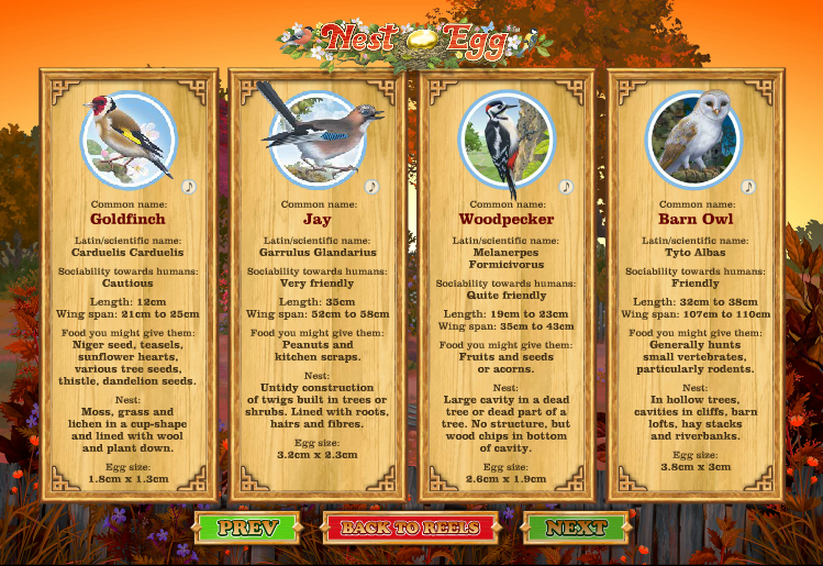 Nest Egg - Bird Themed Online Slot Game