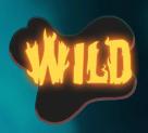 wish master wild