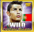 world football stars 2014 wild