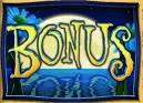 100 ladies bonus
