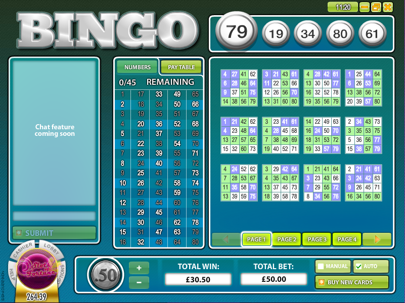 bingo 80 ball slot review