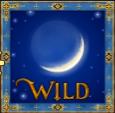 nostradamus wild