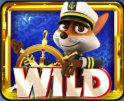 foxin wins again wild