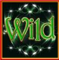 robyn wild