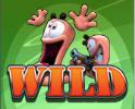 worms wild