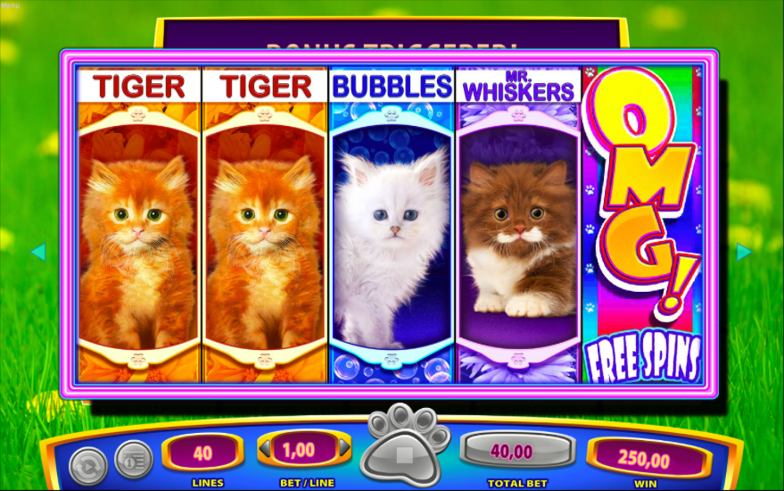 OMG Kittens Slot Machine - Play OMG Kittens Free Online