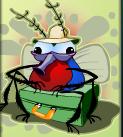 travel bug wild