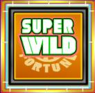 wheel of fortune super wild