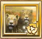 lions roar scatter
