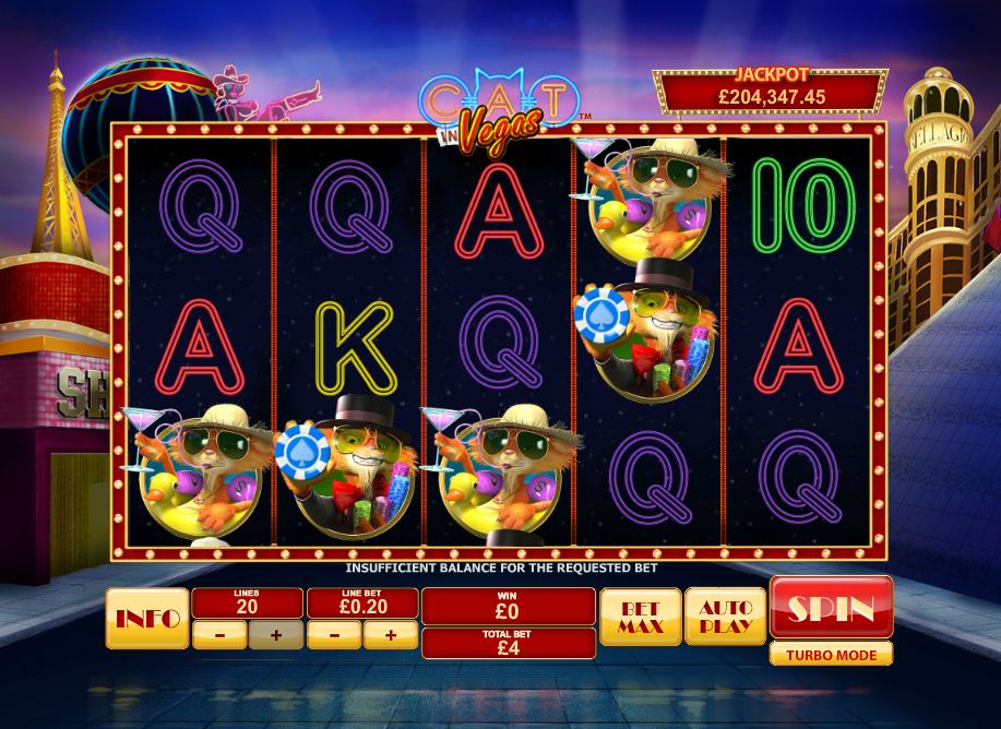 cat in vegas slot