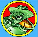 crazy chameleons lizard