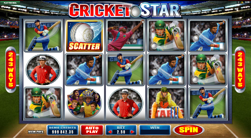 cricket star screenshot