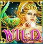 enchanted mermaid wild