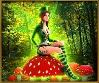 faeries fortune faery