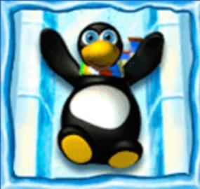 penguin vacation wild