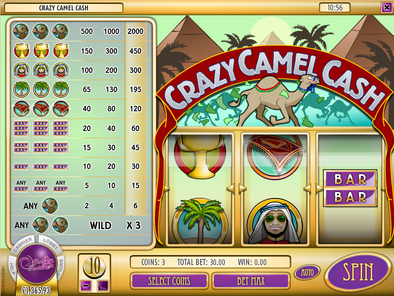 crazy camel cash slot
