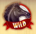 jackpot jockey wild