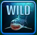 nauticus wild shark