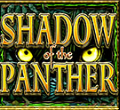shadow of the panther wild